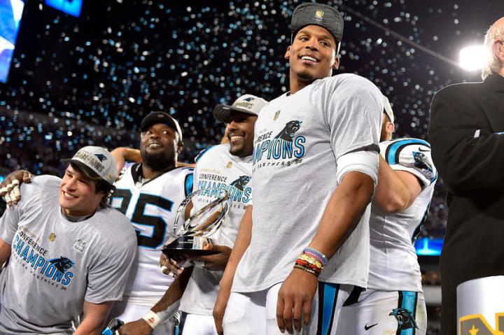 NFL: NFC Championship-Arizona Cardinals at Carolina Panthers